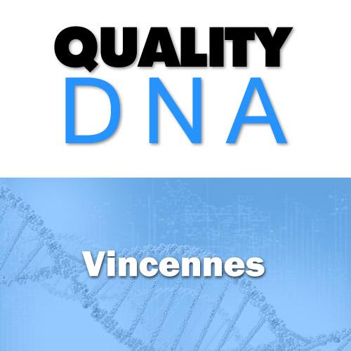 DNA Paternity Testing Vincennes
